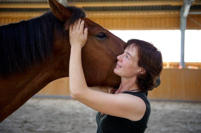 Pferdepunkt_Claudia_Meier